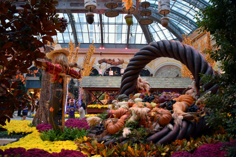 Autumn-in-Bellagio-gardens-2015