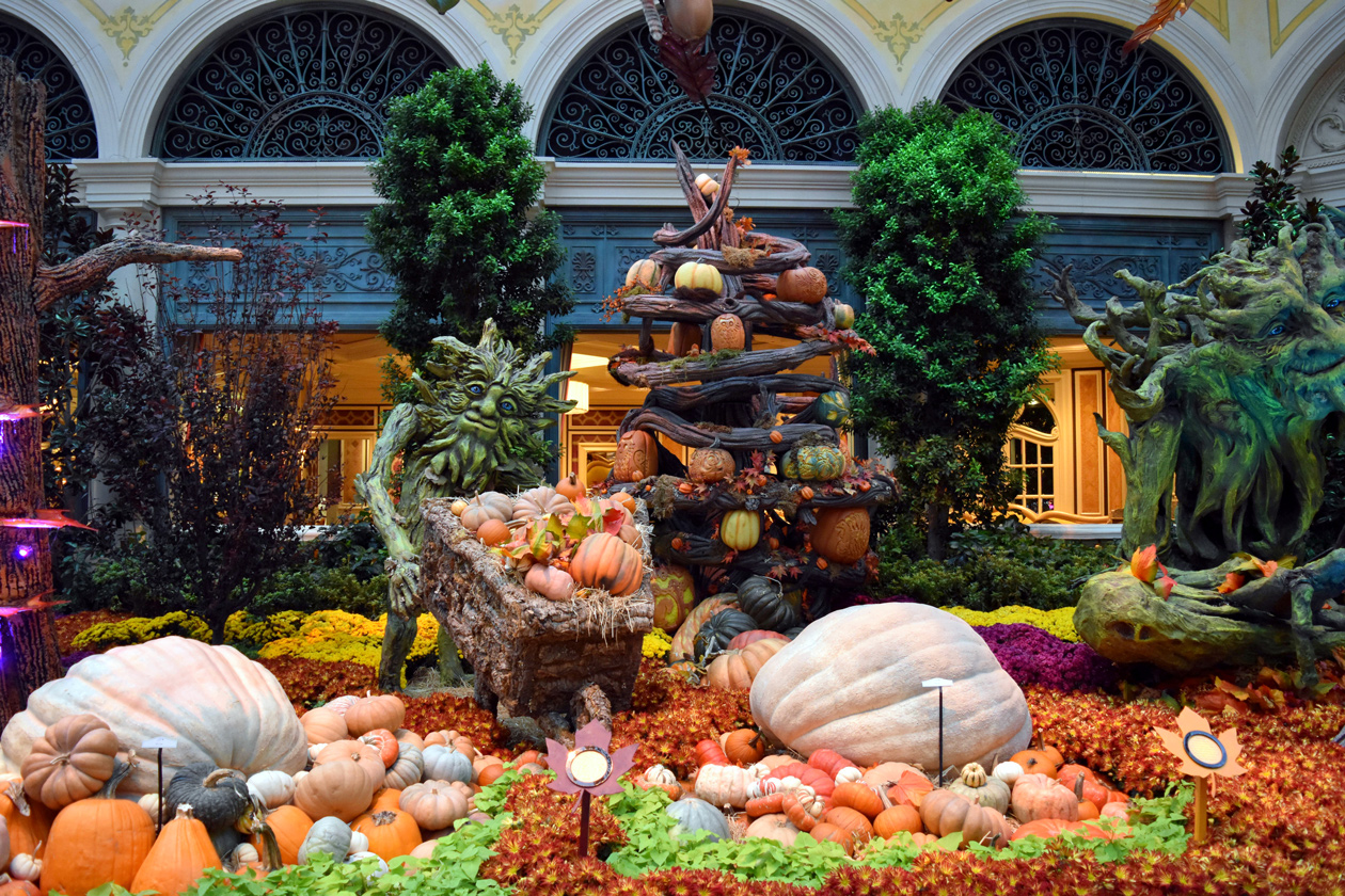 Bellagio-Conservatory-and-Botanical-Gardens-fall-2015